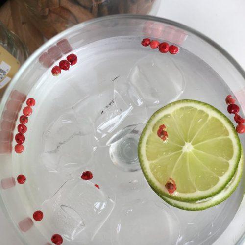 Gin Tonic Cocktails met verse garneringen